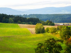 Plowed field in Czech